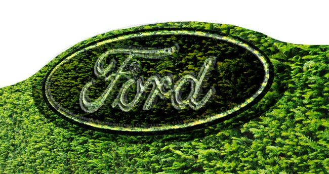 Ford hedge2 copy